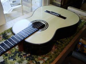 New Philip Woodfield Guitar